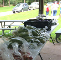 Free Fresh Produce Stand Offered in Adel