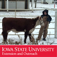 ISU Ext - Market Beef Weigh In