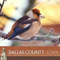 DCCB - Bird Hike
