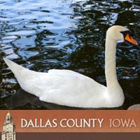 DCCB - Swan Soiree