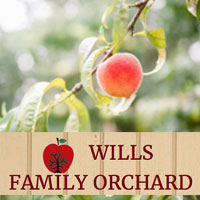 Wills-Family-Orchard